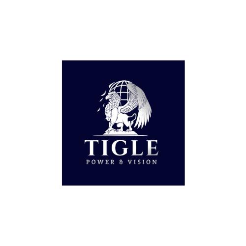 logo TIGLE progetto netcomm award